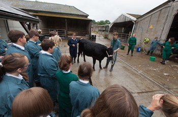 Brockhill School Farm - Future of Farming