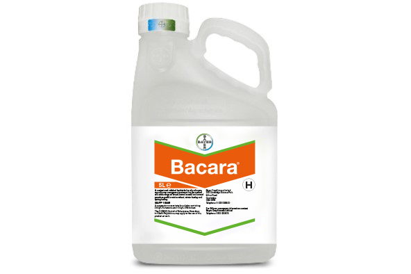Bacara - Bayer Crop Science