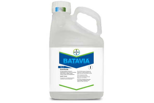 Batavia - Bayer Crop Science
