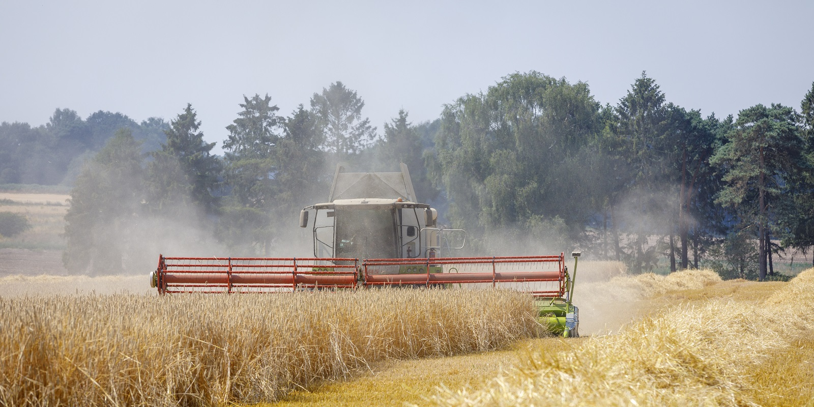How to calculate unit cost of production on arable farms