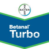 Betanal Turbo