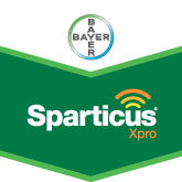 Sparticus Xpro